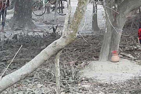 কালিগঞ্জে মনসা মন্দিরের বেদি ভাঙচুর, দু' কলেজ ছাত্রীসহ একই পরিবারের চারজনকে পিটিয়ে জখম, তিন দিনেও মামলা হয়নি